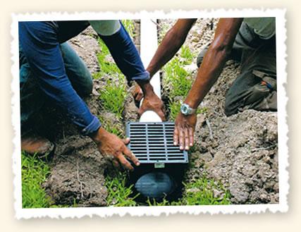 Fix Backyard Drainage Problems - Best Drain Photos ...